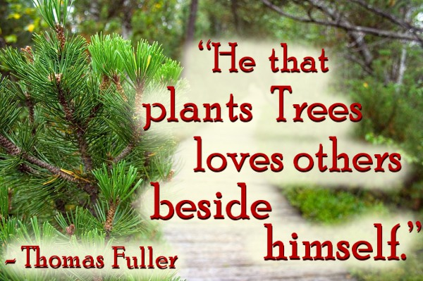 he-that-plants-trees-loves-others-beside-himself-thomas-fuller-nature-quote1